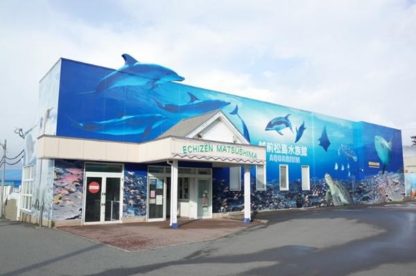 松島水族館