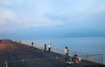 敦賀での釣り