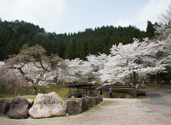 佐山姫公園