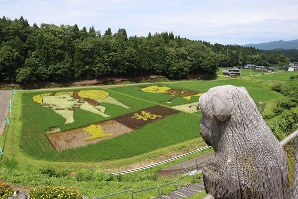 田んぼアートを上から見る