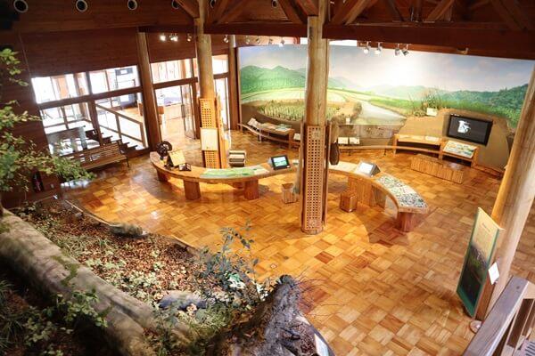 福井県自然保護センター本館