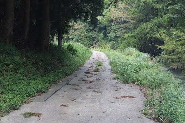 木の実谷コース