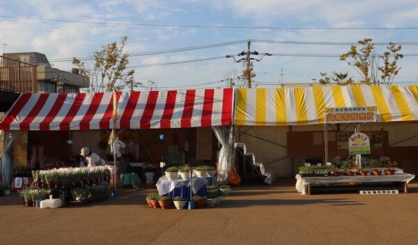 菊の販売所