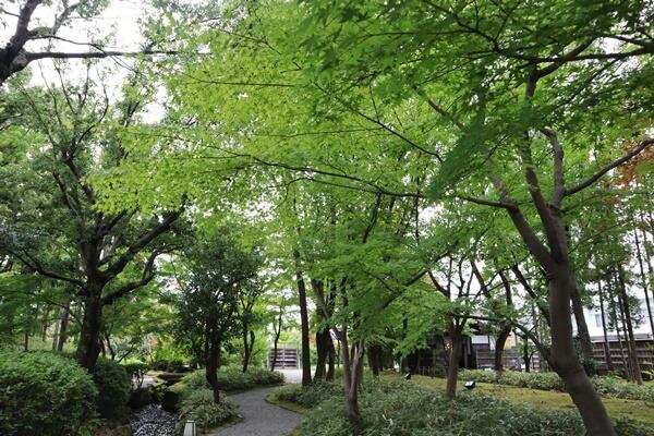 養浩館庭園の紅葉