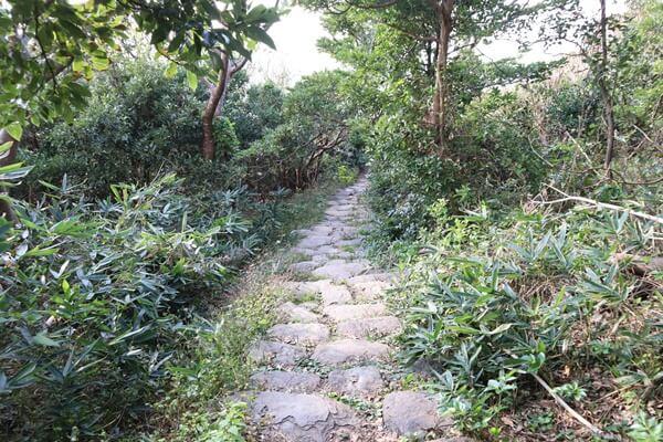 雄島の散策路