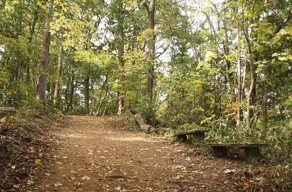 楞厳寺の登山道