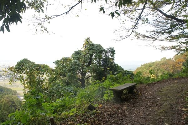 景色の見れるベンチ