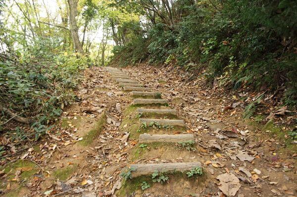 階段状の登り