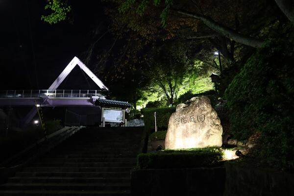 ライトアップの西山公園