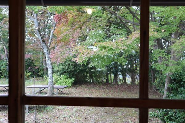 ごはんcafe 森の音の外の景色