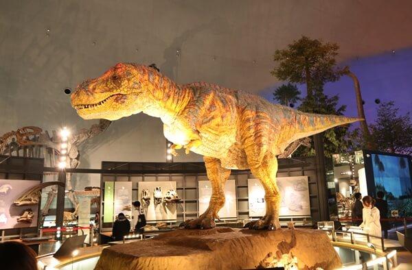 恐竜博物館の動く恐竜