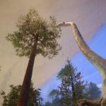 恐竜博物館の恐竜