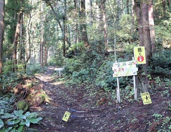 大正寺コースの登山口