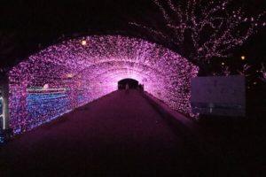 アーチトンネルの内部