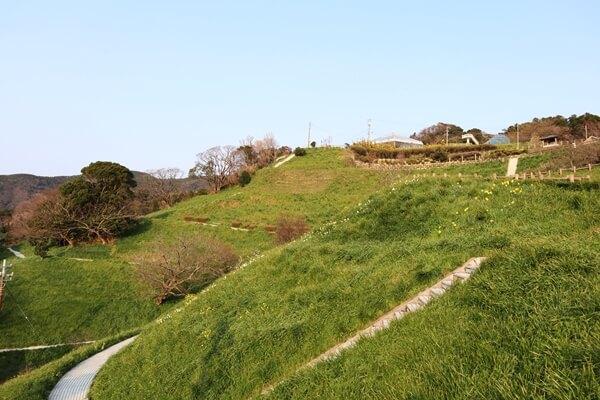ナルシスの丘