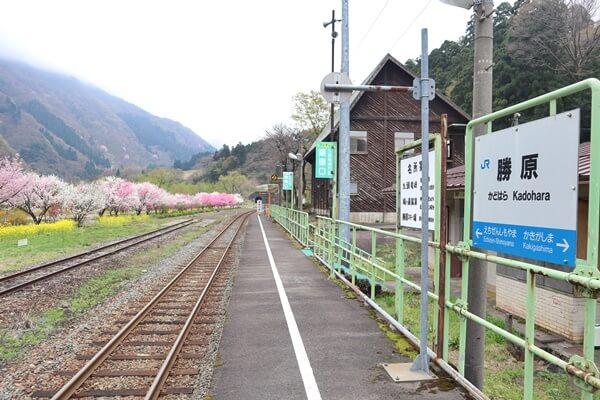 勝原駅のホーム
