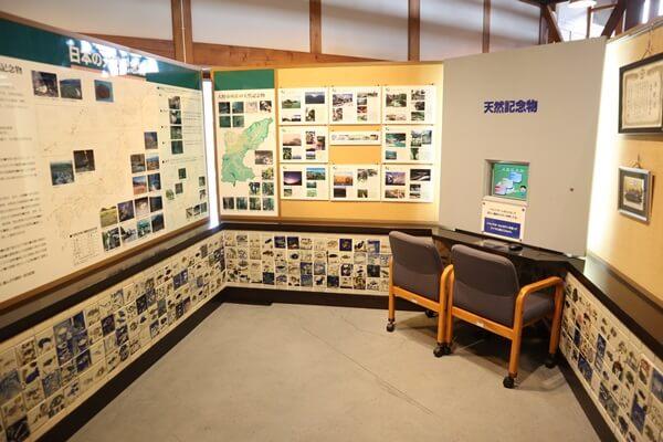イトヨの展示