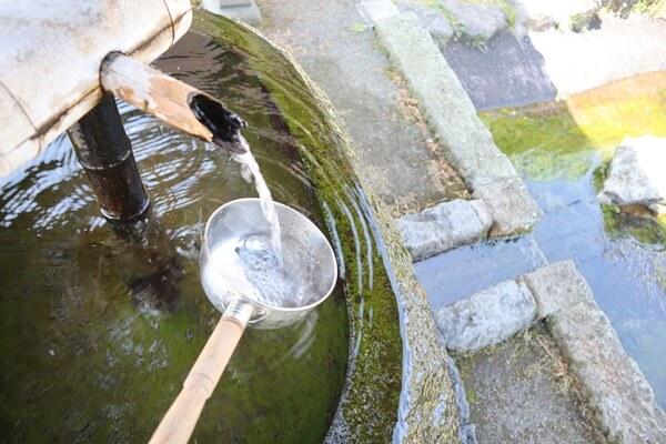 芹川清水の水