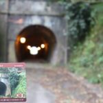トンネルカード