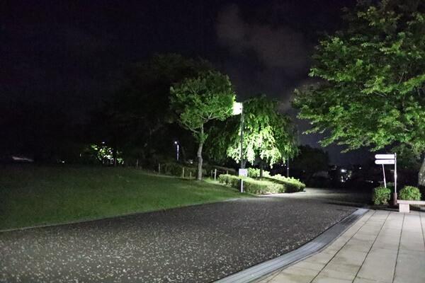西山公園の夜