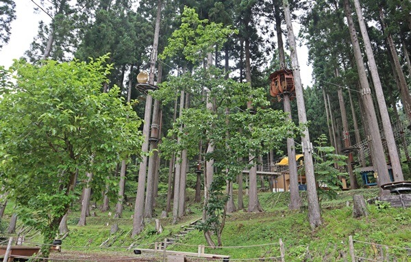 木の上の休憩所
