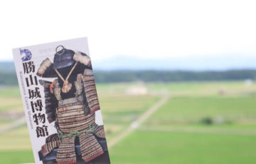 勝山城の眺め