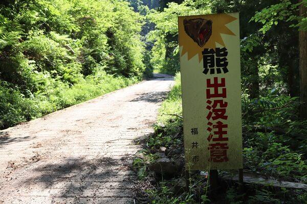 一乗滝の上の道