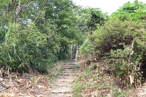山頂の階段