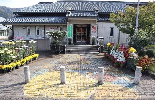 万葉菊花園入口