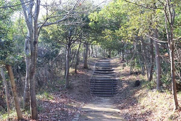 天筒山の道