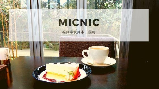 Micnic