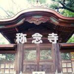 明智光秀、新田義貞、松尾芭蕉に関係していた【称念寺】