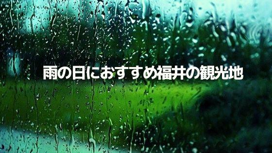 雨の日でも楽しめる福井