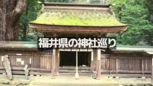 福井県の神社巡り