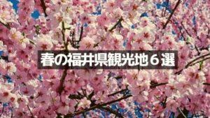 福井県・春のおすすめ観光地6選