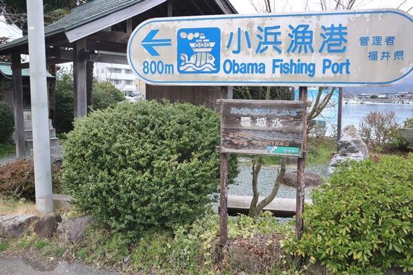 小浜漁港近く