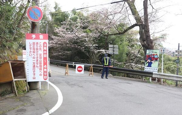 足羽山の交通規制