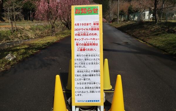 2020年の桜まつりはコロナウイルスのため中止