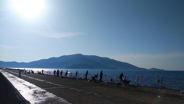 敦賀新港海釣り公園