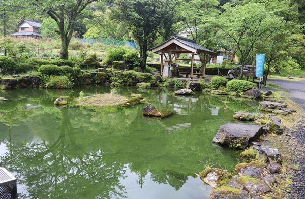 石神の湧水の泉