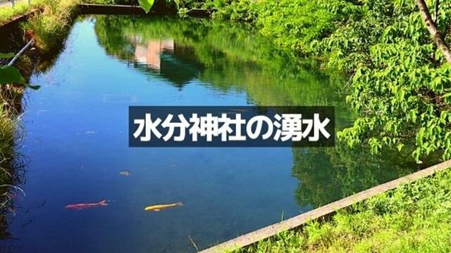水分神社の湧水