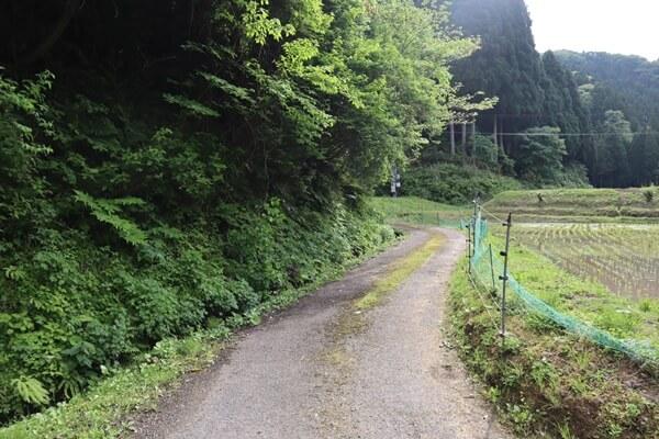 解雷ヶ清水への道