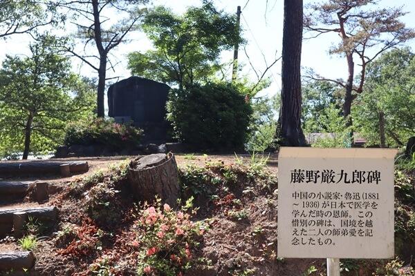 藤野厳九郎の碑