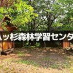 八ツ杉千年の森はどんな所?キャンプやバンガローの価格は?