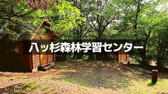 八ツ杉千年の森