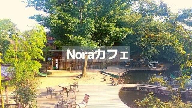 ノラカフェ
