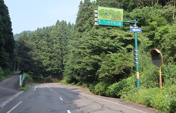 八ッ杉森林学習センターの行き方
