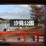 【三国の汐見公園】桜並木がきれいな三国町のスポット