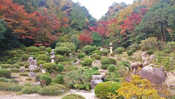西福寺の紅葉