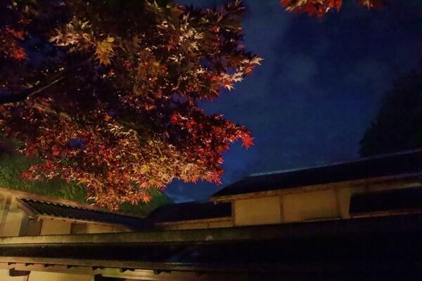 養浩館庭園のライトアップ